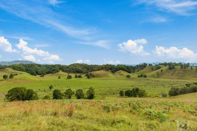 Picture of 300 a Lundberg Drive, SOUTH MURWILLUMBAH NSW 2484