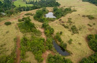 Picture of 2 Locations In Far North Queensland, Ravenshoe QLD 4888
