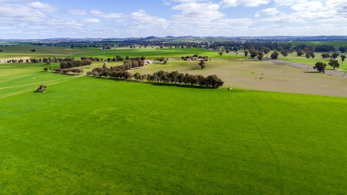 1277 Sturt Hwy, Borambola, Wagga Wagga NSW 2650, Image 2