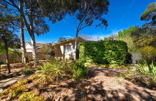 Picture of 47 Wattle Street, O'Connor ACT 2602