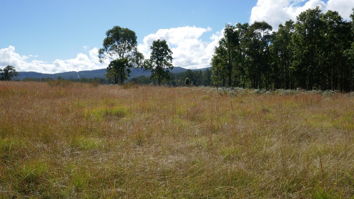 76 Mills Road, Bean Creek NSW 2469, Image 2