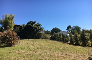 Picture of 51 Jagera Drive, Bellingen NSW 2454