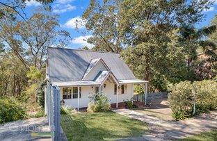 38 Gazania Street, Faulconbridge NSW 2776