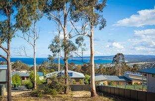 12 CURLEW CLOSE, Mirador NSW 2548