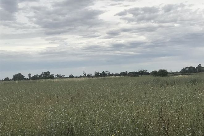 Picture of 00 McMillans Road, COHUNA VIC 3568