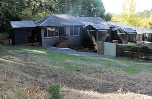 Picture of 4/25 Whitefield Street, Black Hill VIC 3350