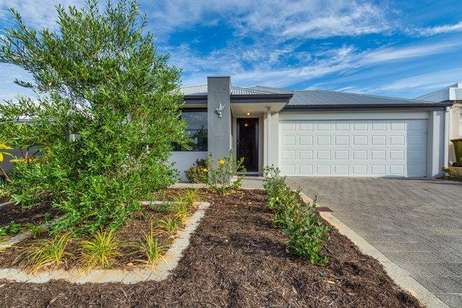Picture of 32 Everingham Street, CLARKSON WA 6030