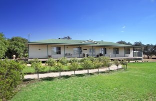 Picture of 'Amity Park' 986 Wandobah Road, Gunnedah NSW 2380
