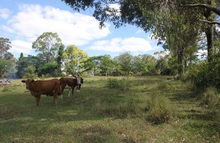 Picture of 217 Eel Creek Road, Southside QLD 4570
