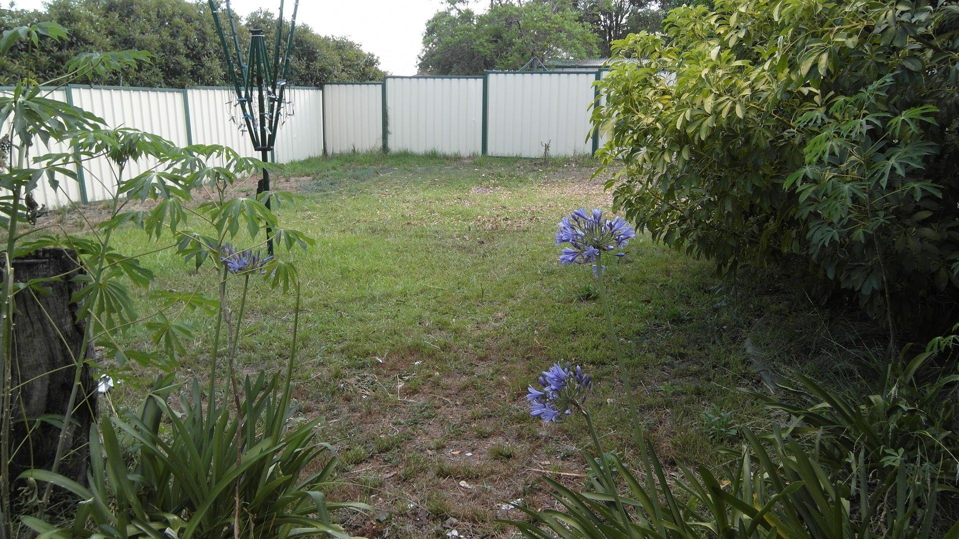 Bligh Park NSW 2756, Image 4
