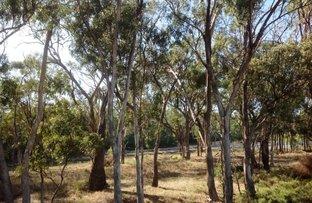 Picture of 6 Rivergum Estate, Cobram VIC 3644