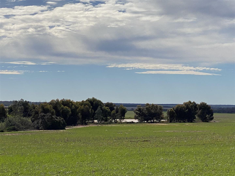 . 'Green Wood', Cleary WA 6472, Image 1