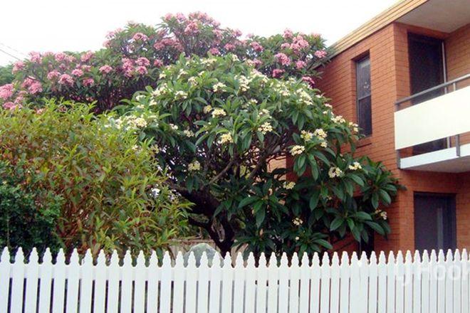 Picture of 1/36 Jabiru Street, BELLARA QLD 4507