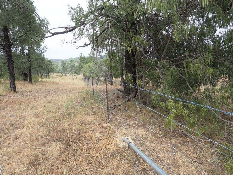 13 Narrabri Road, Bingara NSW 2404, Image 1