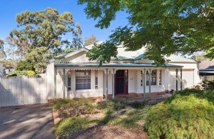 Picture of 30 Palm Ave, Spring Gully VIC 3550