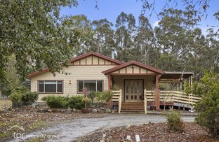 Picture of 197 Wolfes Road, Neika TAS 7054