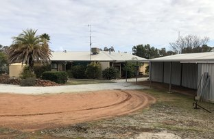 Picture of 14 Cardwell St, York WA 6302