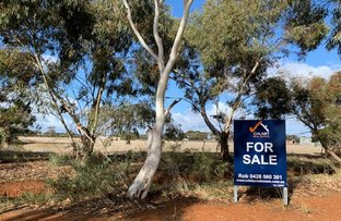 Picture of 82 The Cattle Track Road, Crystal Brook SA 5523