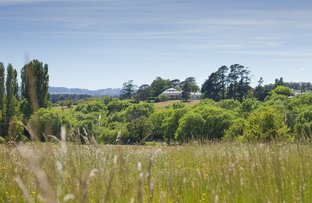 Lot 142 Throsby Views, Moss Vale NSW 2577