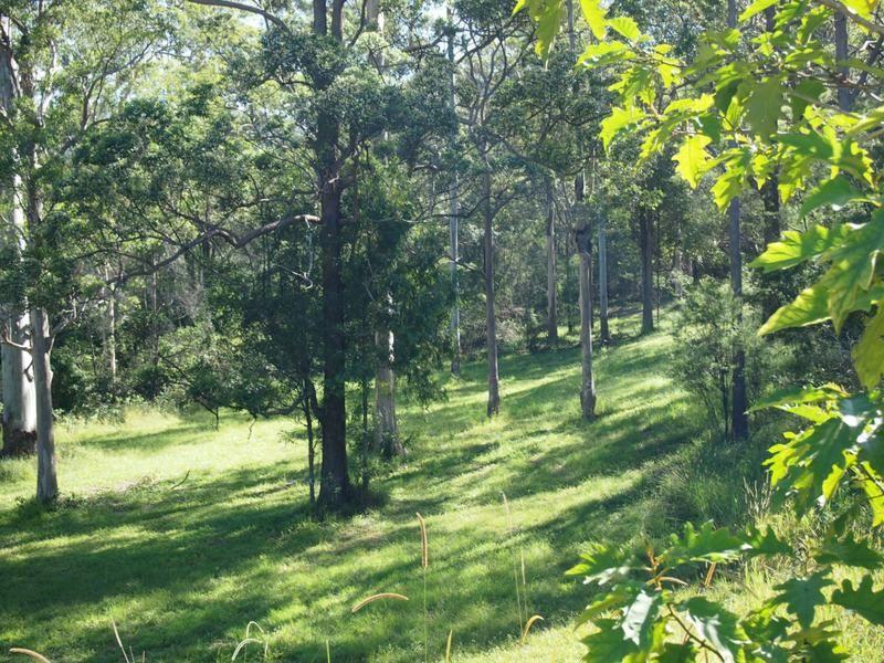 Wongawallan QLD 4210, Image 1