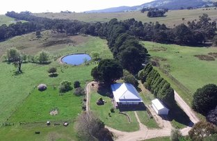 20 Allisons Rd, Nulla Vale VIC 3435