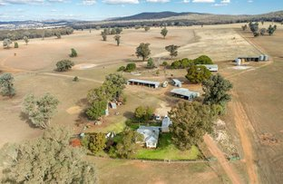 Picture of Benloch O'Briens Creek Rd, Big Springs via, Wagga Wagga NSW 2650