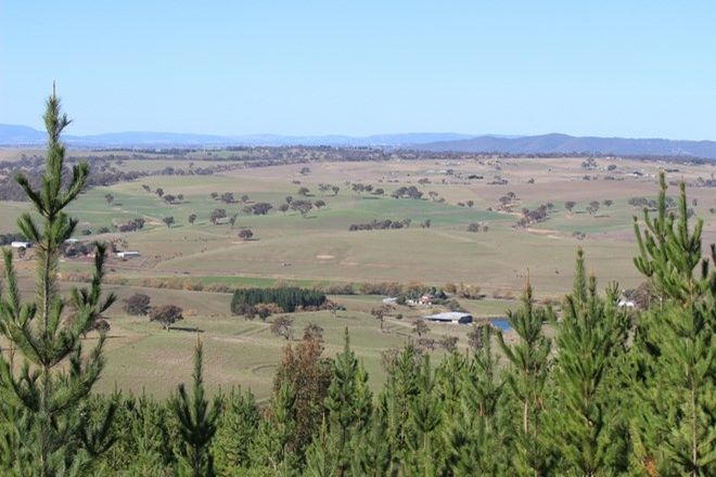 Picture of FITZGERALDS VALLEY NSW 2795
