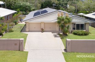 Picture of 4 Cambridge Court, Tewantin QLD 4565