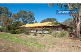 Picture of 47 Lowe Street, Howlong NSW 2643