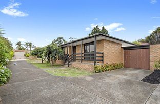 Picture of 1/48 Arthur Phillip Drive, Endeavour Hills VIC 3802