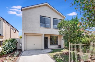 Picture of 51A Burrabogee Road, Toongabbie NSW 2146