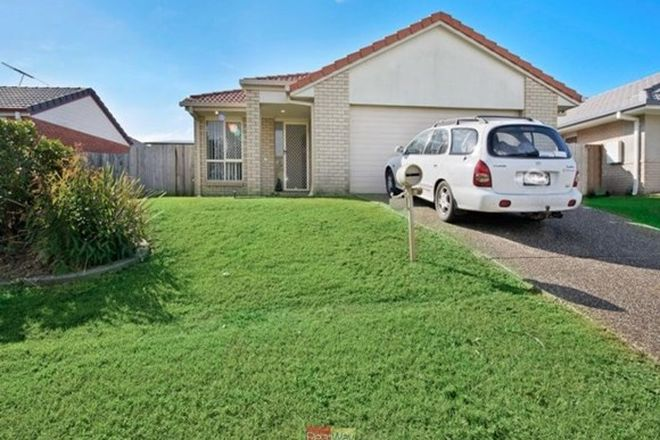Picture of 8 Varuna Court, ROTHWELL QLD 4022