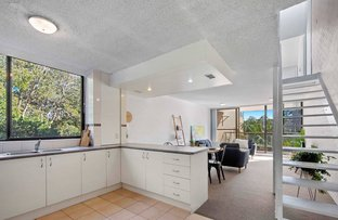 Picture of 31/58 Pacific Drive, Port Macquarie NSW 2444