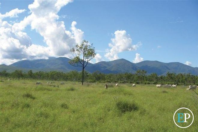 Picture of Lot 173 Mt Jack Road, BROOKHILL QLD 4816