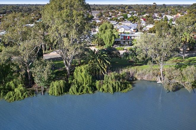 Picture of 53 Murray Avenue, RENMARK SA 5341