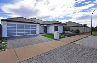 Picture of 21 Gippsland Way, Ellenbrook WA 6069