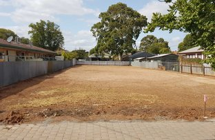 Picture of 49 Lot 11 Ormond Avenue, Daw Park SA 5041