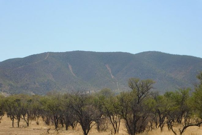 Picture of Lot 155 Gulf View Road, NAPPERBY SA 5540