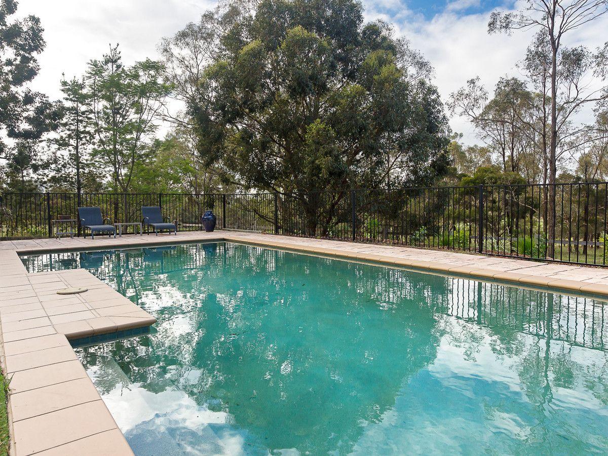 558 Milbrodale Road, Broke NSW 2330, Image 2
