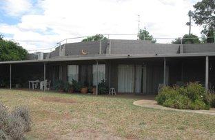 120 Ratho Road, Young NSW 2594