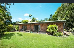 Picture of 253 PALMVALE ROAD, Palmvale NSW 2484