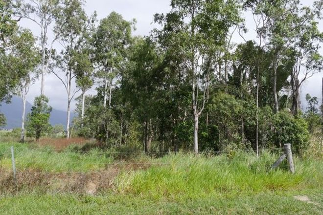Picture of Lot 16/RP836956 Ellerbeck Road, CARRUCHAN QLD 4816