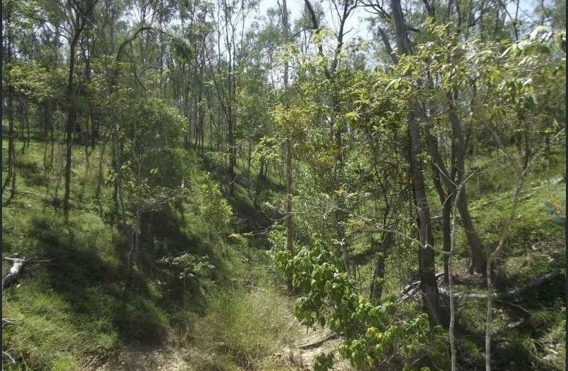 1 Camp Paddock Road, Good Night QLD 4671, Image 2