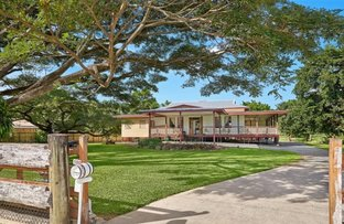 Picture of 100-104 Giffin Road, White Rock QLD 4868