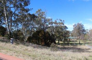 14 Gaffney Bealach O'Halloran Avenue, Glen Innes NSW 2370