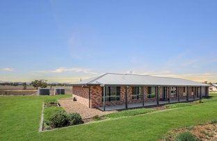Picture of 154 Borah Creek Road, Quirindi NSW 2343