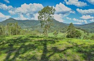 Picture of Lot 173 Gradys Creek Road, Loadstone via, Kyogle NSW 2474