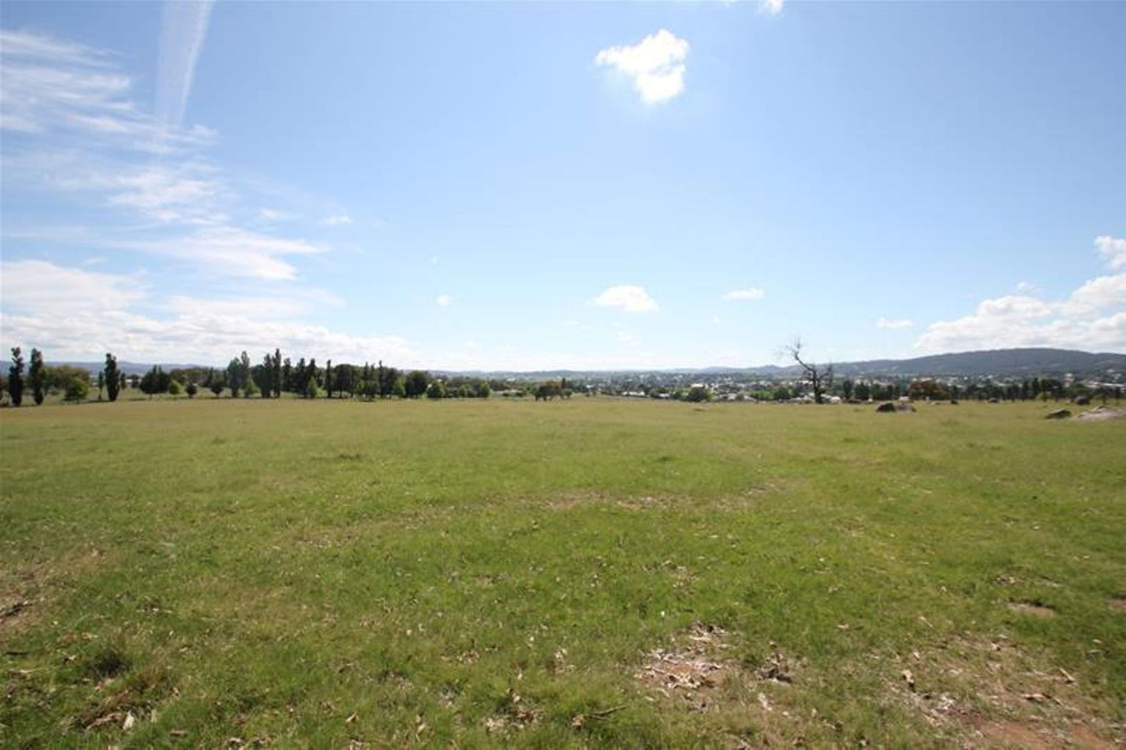 80 Sunnyside Loop Road, Tenterfield NSW 2372, Image 1