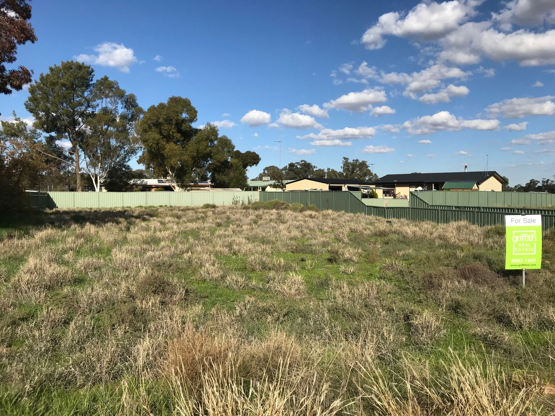 69 Barwidgee Boulevard, Darlington Point NSW 2706, Image 2