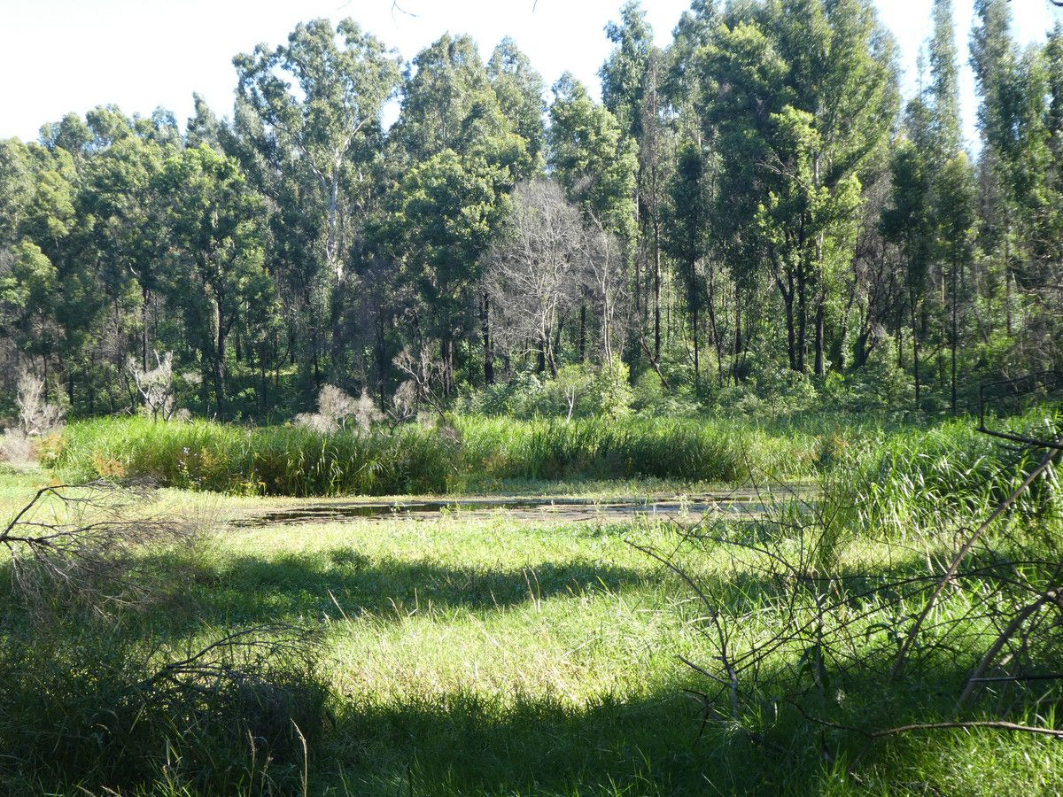 534 Phillips Swamp Road, Busbys Flat NSW 2469, Image 0